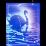 エアブラシ クリスタルシリーズ 白鳥座